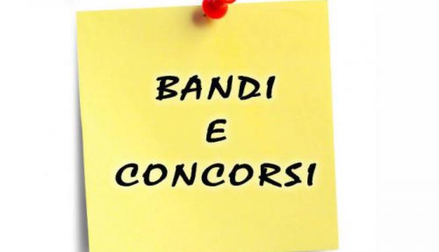 MANIFESTAZIONE INTERESSE NOMINA MEMBRO ESPERTO COMMISSIONE ESAMINATRICE - CONCORSI CAT. C e B