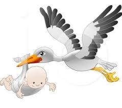 Riapertura termini prima infanzia 1